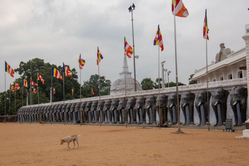 2018 SriLanka 1-183