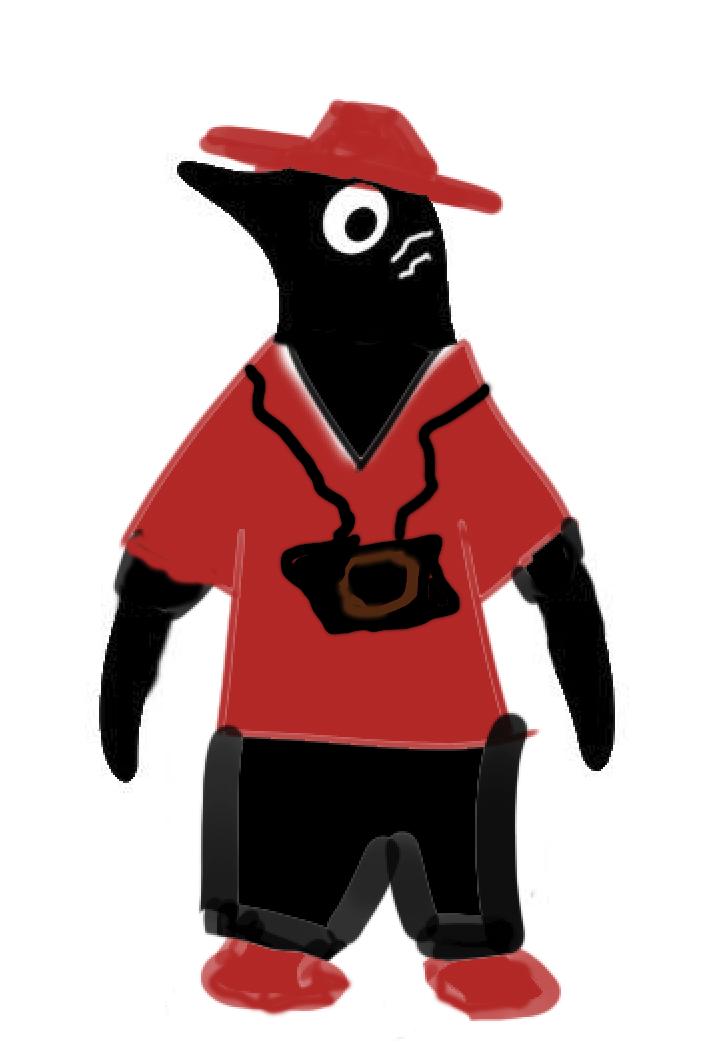 Camera Penguin